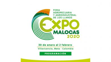 Photo of Programación Expomalocas 2020